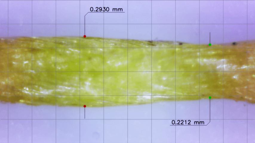 Сечение плетенки под микроскопом